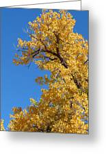 Golden Tree Greeting Card