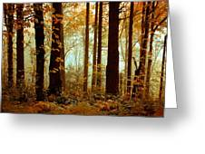 Golden Trees Greeting Card