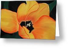Golden Tulip Greeting Card