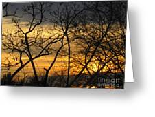 Golden Twilight 2 Greeting Card
