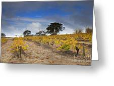 Golden Vines Greeting Card