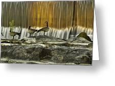 Golden Waterfalls Greeting Card