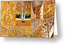 Golden Weeping Birch Tree Collage Greeting Card