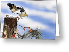 Goldfiches Flying Over Lichen Stump Greeting Card