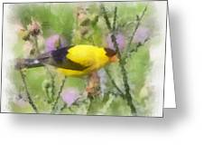 Goldfinch #3 By Kerri Farley Greeting Card