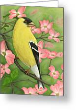 Goldfinch And Dogwood Greeting Card
