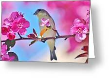 Goldfinch Behind Pink Blossoms 031015aaa Greeting Card