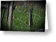 Goldfinch Gathering Greeting Card