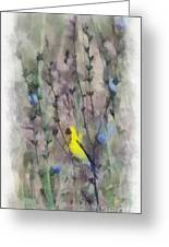 Goldfinch In Wildflowers Greeting Card