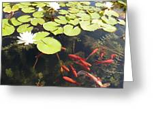 Goldfish And Water Lily 1 Greeting Card