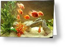 Goldfish At The Chinese Restaurant  Greeting Card