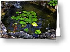 Goldfish With Lily Pads Greeting Card