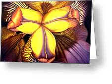 Goldie's Iris Greeting Card