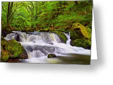 Golitha Falls And River Fowey Greeting Card