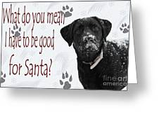 Good For Santa Greeting Card by Cathy  Beharriell