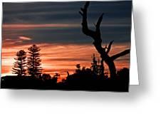 Good Night Trees Greeting Card