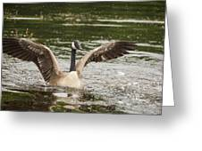 Goose Action Greeting Card