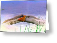Goose Kiss - Featured In Comfortable Art - Nature Wildlife - Wildlife Groups Greeting Card