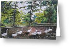 goose on Olot Greeting Card