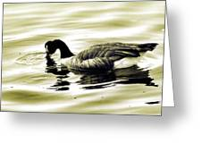 Goose Reflecting In The Water Greeting Card