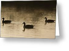 Goose Silhouette Greeting Card