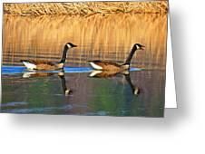 Goose Talk Too Greeting Card