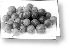 Gooseberries Greeting Card