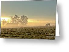 Gorgeous Morning On The Farm Greeting Card