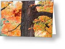 Gorgeous Tree Greeting Card by Lorena Mahoney