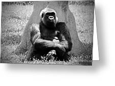Gorilla In Solitude Greeting Card