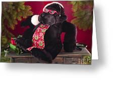 Gorilla With Shades-faa Greeting Card