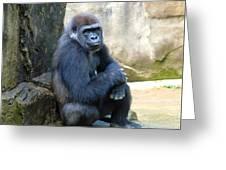 Gorilla Smile Greeting Card