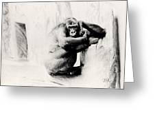 Gorilla Unamused Greeting Card