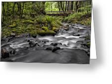 Gorton Creek Bridge Greeting Card