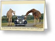 Got Grey Poupon Greeting Card