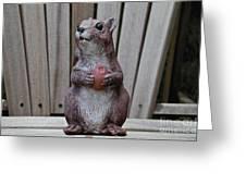 Got Nuts Greeting Card