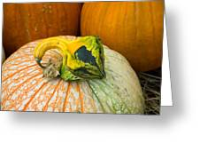 Gourd Pair Greeting Card