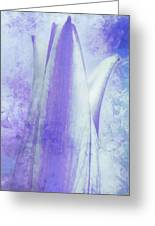 Graced Blossom In Lavender Greeting Card