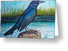 Grackle By The Water Greeting Card