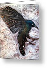 Grackle Greeting Card