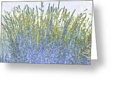Grains Greeting Card