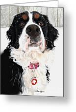 Grand Berner Girl Greeting Card