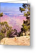 Grand Canyon 37 Greeting Card
