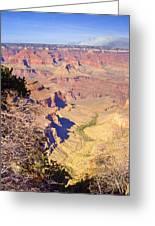 Grand Canyon 41 Greeting Card