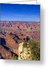 Grand Canyon 43 Greeting Card
