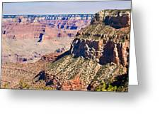 Grand Canyon 50 Greeting Card