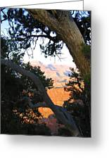 Grand Canyon 74 Greeting Card
