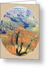 Grand Canyon 77 Greeting Card