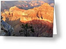 Grand Canyon 83 Greeting Card