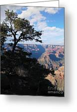 Grand Canyon Afternoon Greeting Card